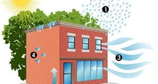 تأثير الرطوبة على المباني